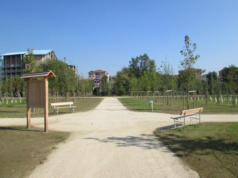 4 Parco Cascina Bordina Bosco in città Grua, arredo urbano Settimo Torinese
