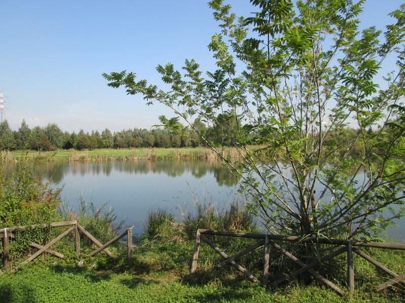 6 Parco Castelverde - Settimo Torinese Grua arredo verde lago