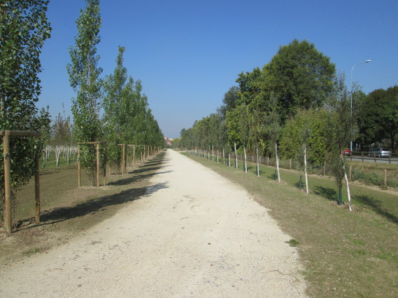 8 Parco Cascina Bordina Bosco in città Berlinguer Grua aredo verde viale - Settimo Torinese